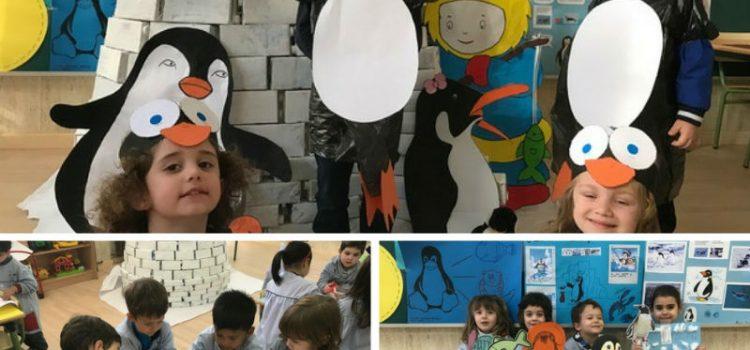 Proyecto Pingüinos