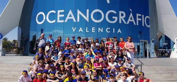 6º de Primaria en Valencia