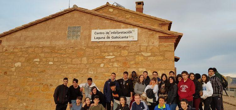 Excursión a la Laguna de Gallocanta. 4º de Secundaria.